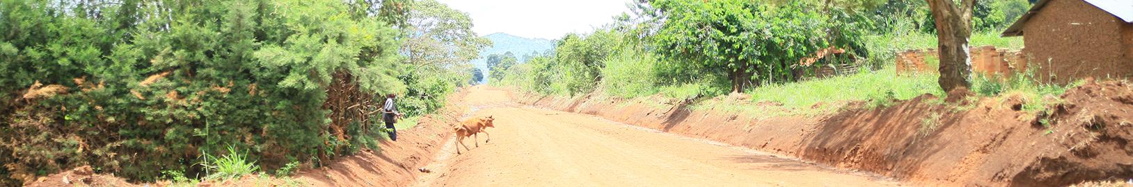 Mparangasi Waki Kiryabutuzi 16.2 Km